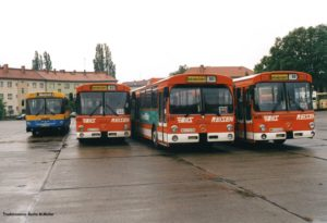 Busse der Verkehrsbetriebe Bild auf dem Betriebshof Zehlendorf (Foto: Michael Müller, Traditionsbus Berlin)