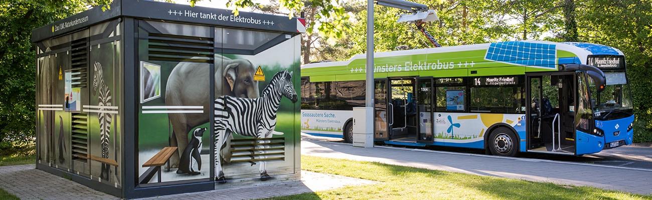 Bühne E-Bus am Zoo